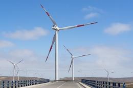 Medidores inteligentes en el Reino Unido, nuevas turbinas eólicas y petroleras plantan árboles