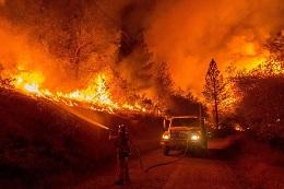 Fondo por incendios forestales en California, descarbonización y renacionalización de redes eléctricas en Europa